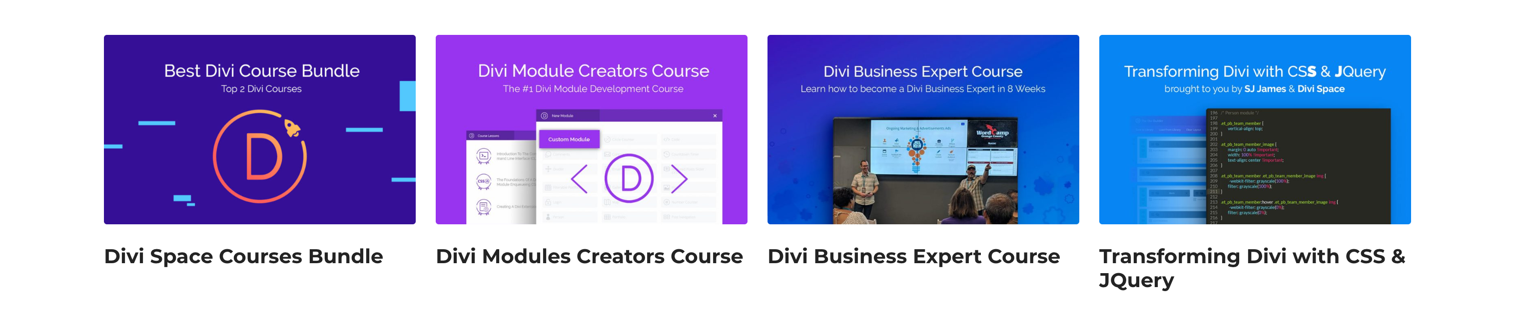 WordPress_and_Divi_Courses_-_Online_Courses_from_Beginner_to_Expert
